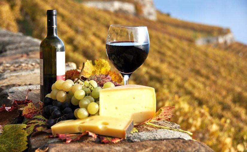 A Rare Treasure of Calabria: Scavigna DOC Wine