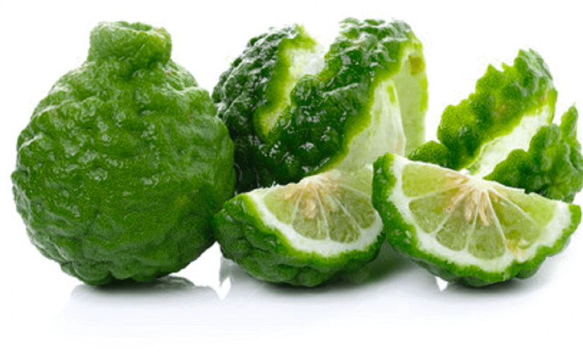 The Green Design, the Bergamot Charm