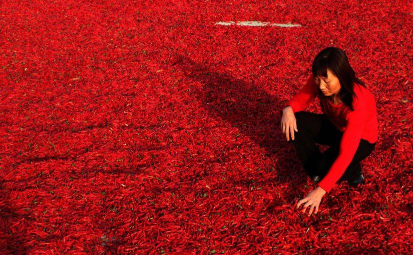 China likes Calabrian Hot Chili Pepper